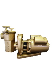 Aqua Flo A Series 1 3 3 Hp Brass Pump Swimming Pool Pump